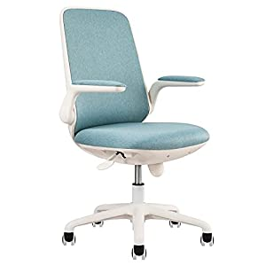 318M4hUMySS._SS300_ Coastal Office Chairs & Beach Office Chairs