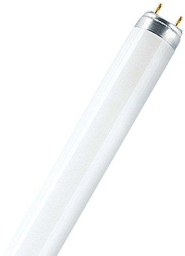 Leuchtstofflampe L 36 Watt / 965 (72 Biolux) - Osram