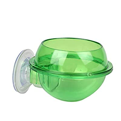 Balacoo Suction Cup Reptile Feeder Anti-Escape Reptile Food Water Bowl for Lizard Chameleon from Balacoo