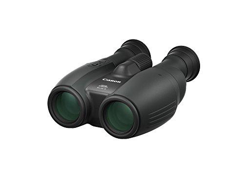 Canon 10x32 IS verrekijker (10-voudige vergroting en Powered IS beeldstabilisator) zwart
