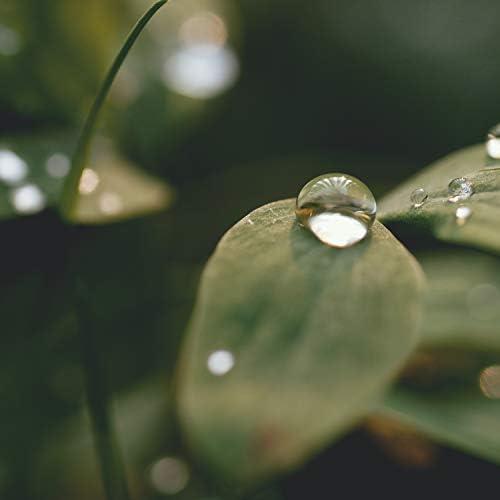Musica Relajante & Yoga, Lluvia Relajante & Música ambiental relajante