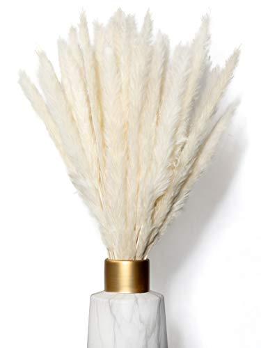 WHITE LUXURY Pampasgras klein 30x als Trockenblumen EIN Hingucker - ewig haltbares Pampasgras getrocknet für Trockenblumen Deko - Pampasgras Deko & getrocknete Blumen - Trockenblumenstrauß Vase Deko