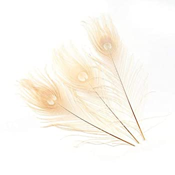 Shekyeon 10-12inch Dyeing Peacock Feathers Bleached Plume Wedding Table Centerpiece Pack of 10 Off White