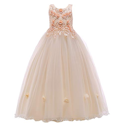 Flower Girl Lace Floor Length Tulle Dress for Kids Wedding Bridesmaid Pageant Party Prom Formal Ball Gown Princess Puffy Dance Evening Gown Champagne 6-7 Years