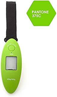 JJJJD Baggage Scale Travel Portable Luggage Scale Home Multi-Function Plastic Electronic Scale (3 Colors) (Color : Green)
