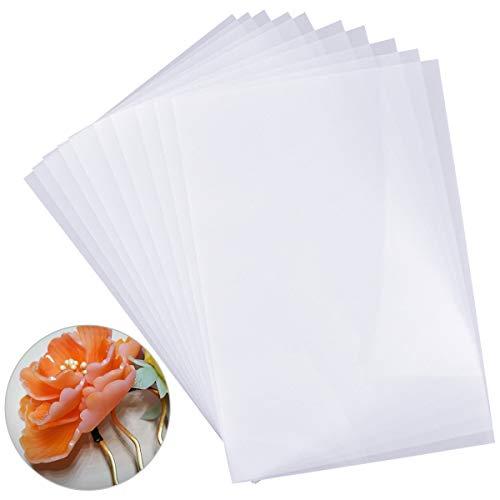 10 Piezas Shrink Film Imprimible, Shrink Plastic Retráctil Plástico Encogible Accesorios Transparente para Impresión a Mano, Pintura, Llavero, Joyería