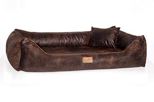 tierlando Orthopädisches Hundebett Alberto Vintage Velours | Waschbar | Vintage Antik Style (AB3 | 80x60 cm (Innen 50x35 cm), 01 | Braun)