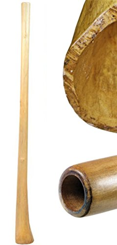 """Teakwood didgeridoos are made of branch pieces and covered with a linseed oil finish in the inside and the outside, 59"""" long, 2"""" mouth piece, 4-5"""" bell end They are perforated and similar in the sound to the eucalyptus instruments. They have a good c..."""