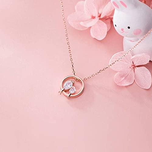 Good dress Collar de Plata S925, Cadena de Clavícula de Diamante con Incrustaciones de Pájaro de Círculo de Estilo...