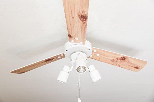 Ventilador de techo con iluminación y interruptor de cordón Cyrus blanco 107cm