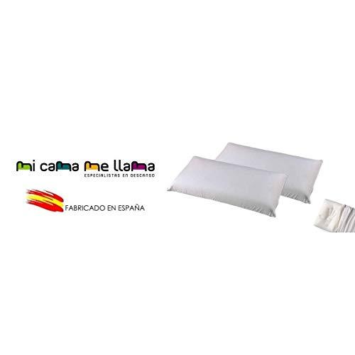 MICAMAMELLAMA Pack 2 Almohadas VISCOELASTICA 100% - Antiácaros y Antibacterias - Tejido Aloe Vera - Doble Funda con Cremallera - Ergonomica - 90cm