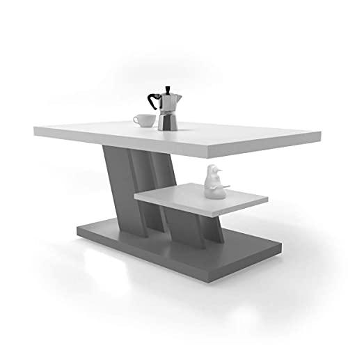CYNTIA - Mesa de Centro - Mesa Centro - Mesa Comedor 90x60x45cm - Mesa de café - mesita Salon con un Estante - Muebles Salon Elegante - Mesa Salon - Moderno y Elegante (Blanco - Gris)