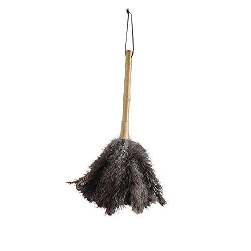 SPICE OF LIFE(スパイス) はたき バンブーハンドル ハンディダスター グリーンECO 掃除 フェザー 直径20cm 高さ36cm YNLY4010