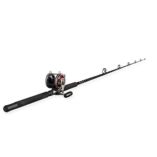 Penn Special Senator 91332 Fishing Rod and Reel Combo, 6.5 Feet