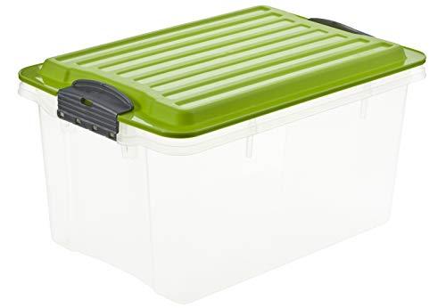 Rotho Compact bewaarbox 4,5 l met deksel, kunststof (PP), groen/transparant, 4,5 liter / A5 (27 x 18,5 x 15 cm)
