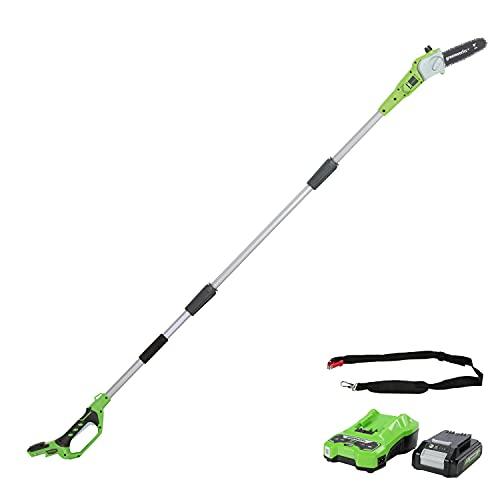 Greenworks Elagueuse sur perche à batterie G24PS20K2 (Li-Ion 24V 20cm longueur...