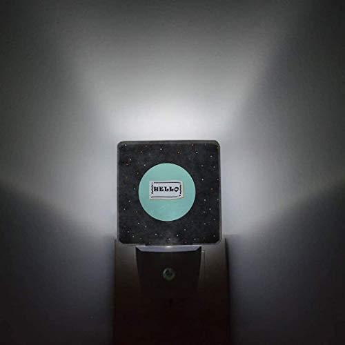 Hello Night Light Plug in Lámpara LED Sensor automático Paquete de 2 luces nocturnas Enchufe en la pared Jardín Zen japonés Piedra de bambú Plumeria Baño Dormitorio Pasillo Decoración brillante Luces