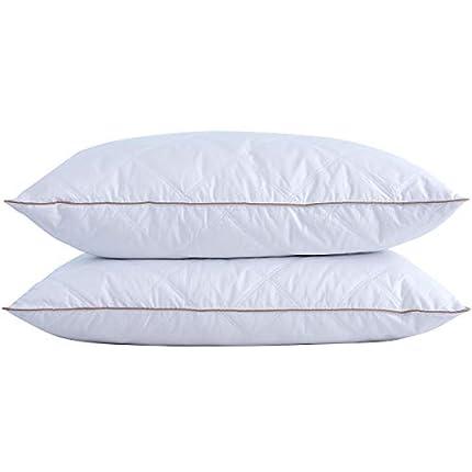 puredown® Almohadas de Plumas Hotel Funda 100% Algodón Anti-ácaros Antipolvo Juego de 2 Lavable a Máquina 48x74cm