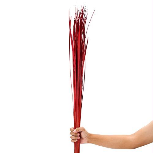 Leewadee Dekobündel für Bodenvasen Trockengesteck Dekogras Dekozweige, 120 cm, Getrocknetes Natur-Gras, rot
