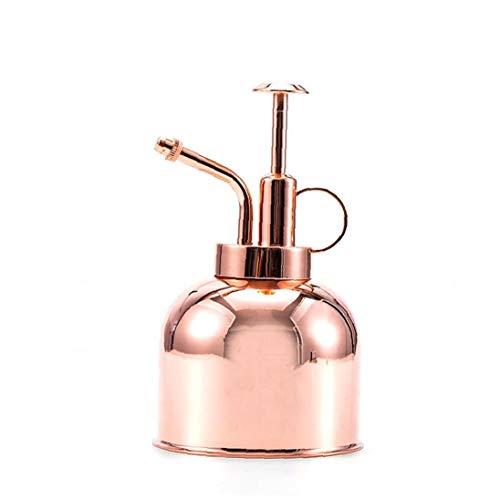 tJexePYK Planta de Mister Botella de Spray Vegetal Mini Metal Spritzer riego Puede con la Tapa de la Bomba pequeña Planta de pulverizador Señor de Interior Planta de la casa al Aire Libre