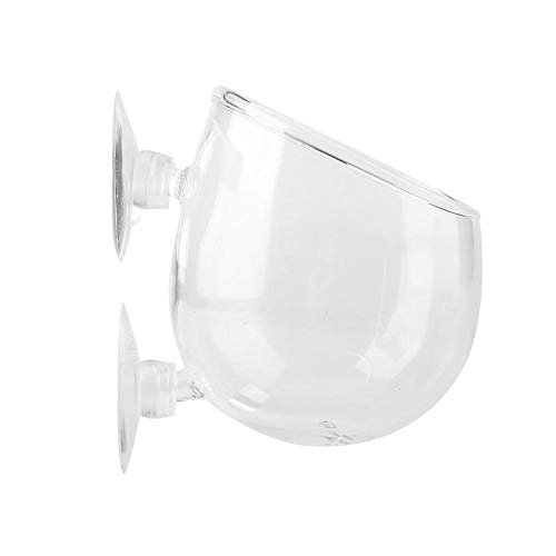 Duokon Aquarium Glas Cup Topf, Live Pflanzenschale Mini Landschaft Pflanzen Anbau Becken Tasse Mini Aquarium Zubehör mit 2 x Saugnäpfe