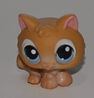 Kitten #47 (Orange, Blue Eyes) - Littlest Pet Shop (Retired) Collector Toy - LPS Collectible Replacement Figure - Loose (OOP Out of Package & Print)