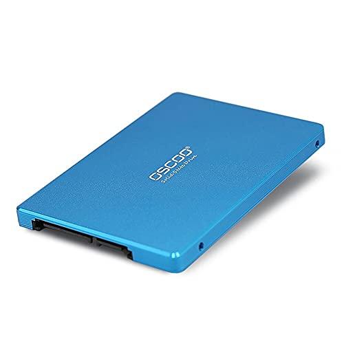 Oscoo Interne SSD-Festplatte (256 GB, 2,5 Zoll / 6,35 cm, SATA 3), Blau