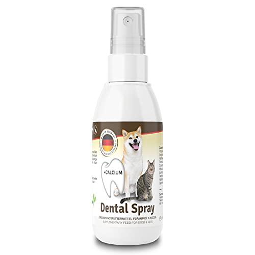 Veddelholzer NEU Dentalspray für Hunde & Katzen. Zahnpflege Hunde & Katzen. Zahnsteinentferner Hund & Katze. Zahnreinigung Hund & Katze. Gegen Mundgeruch bei Hunden. Hunde Zahnpflege 150 ml