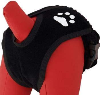 """Cat-Or-Dog.Boutique Culotte Hygiénique de Protection pour Chien Chat Chiot (5(XL) - 50-65 cm / 19,7""""- 25,6"""")"""
