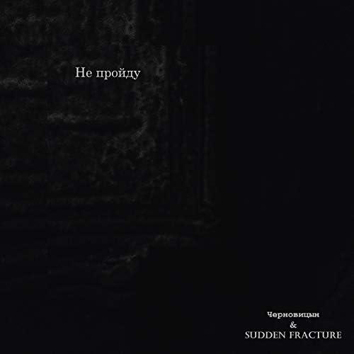 Черновицын & Sudden Fracture