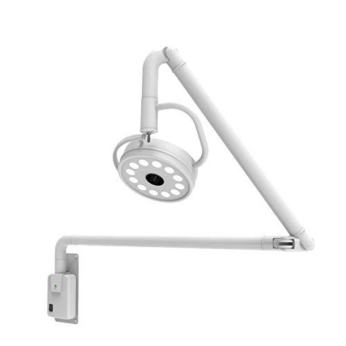 Dental 36W LED Colgante Médico Quirúrgico Examen Ligero Sin Sombras Lámpara Montado En La Pared Quirúrgico Oral Examen Cirugía Plástica Lámpara Sin Sombras