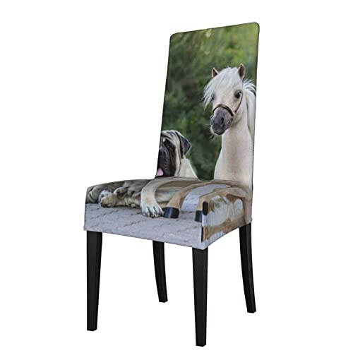 Chair Slipcover Palomino American Miniature Horse Standing Stretch Printed Chair Covers Washable Chairs Protector Seat Cover for Chairs