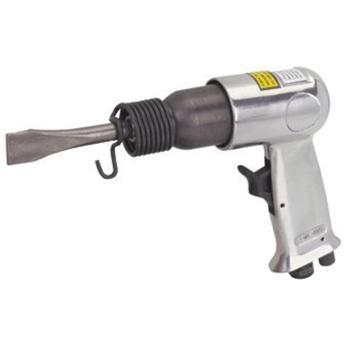 タンク器具キーAir Impact Hammer Kit with Built-in Air Regulator and 2 heavy duty chrome molybdenum chisels [並行輸入品]