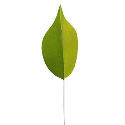 Räder Plein Air Jardin Vent Feuilles Vert – 110 x 25 cm
