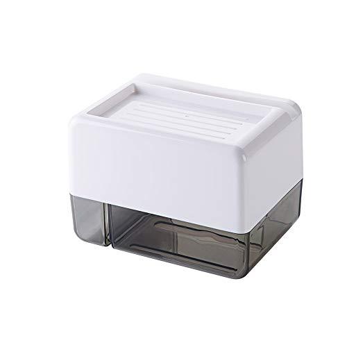 XVXFZEG Aseo impermeable de papel higiénico Creative Box perforado gratuito Caja de papel higiénico papel higiénico tejido titular de rollo de papel simple caja caja de papel del material ABS + PS, Ne