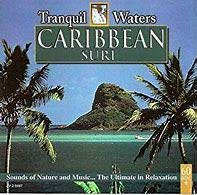 Tranquil Waters: Caribbean Surf