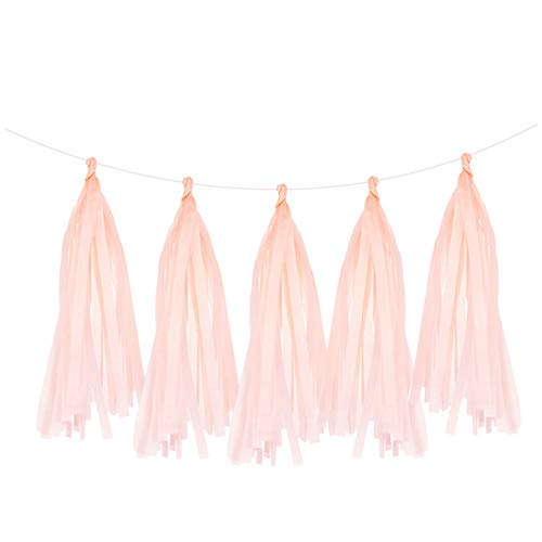 Hanging Decorations for Party 5Pcs 35Cm Tissue Paper Tassels Garland Wedding Decoration Birthday Baby Shower Home DIY Craft Party Supplies,Peach