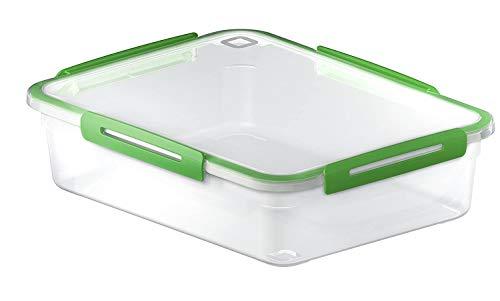 Rotho Memory grosse Frischhaltedose 3,1l mit Deckel, Kunststoff (PP) BPA-frei, grün/transparent, 3,1l (29,0 x 22,0 x 7,7 cm)
