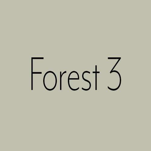 Wandfarbe Grün Capital Paint Latex Bunt Innenfarbe Strapazierfähig Forest 3 10,0 Liter