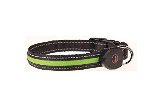 Collar de Perro LED USB Recargable para Mascotas Nylon Led Recargable USB Collares de Perro de Noche Intermitente Ajustable Cuello de Gato, 01, S
