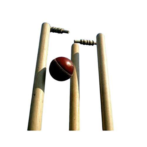 Whitedot Sports Stanford Ash Wood Cricket Stumps(Set of 6 Stumps & Bails)