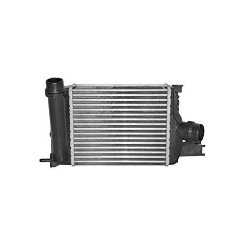 Van Wezel 15004013 Turbocooler