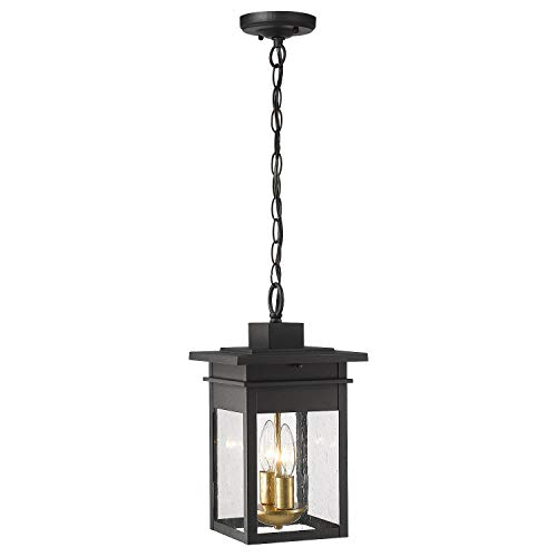 Zeyu 2-Light Outdoor Hanging Lights for Porch, 14 inch Exterior Pendant Light Fixtures, Black and Gold Finish with Seeded Glass, 20072H2