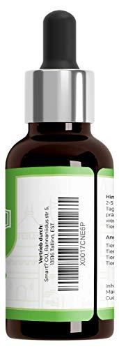 Saint Nutrition® Wurm Liquid Vegan, Flüssige Wurmkur & natürliche Entwurmung - besonders zu empfehlen für den Hund und die Katze - für Katzen und Hunde