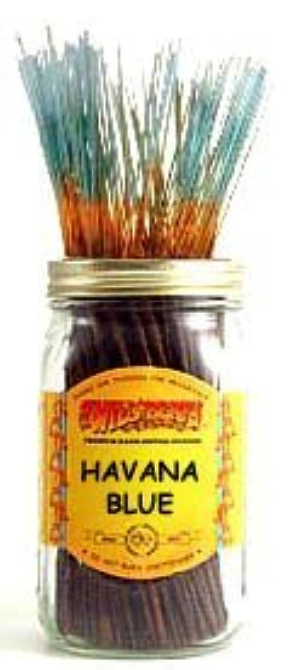 サイレント虚偽一族Havana Blue - 100 Wildberry Incense Sticks [並行輸入品]