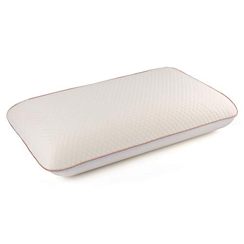 Power of Nature Memory Foam Pillow, Sleeping Pillow for Back, Stomach, Side Sleepers, Contour Pillow for Neck and Shoulder Pain Relief, with Washable Zippered Soft Cover- Queen