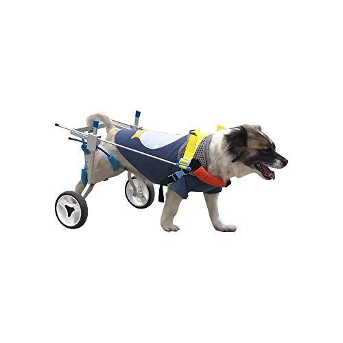 Silla de Ruedas de Entrenamiento de rehabilitación de Mascotas para Cachorros