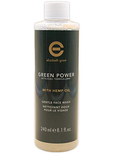 ELIZABETH GRANT Green Power Gentle Face Wash 240ml Gesichtsreiniger