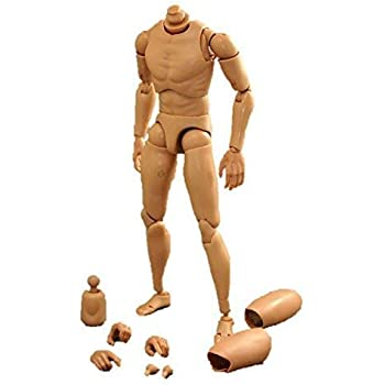 [Tbmodel] 1/6 フィギュア 男性 素体 素体セット 2種類ヘッドコネクタ