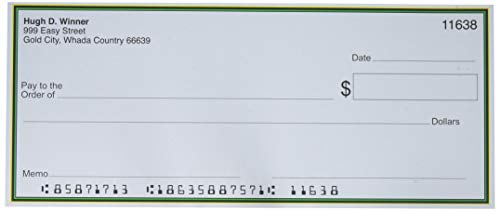 Forum Novelties Jumbo Fake Checks, Multicolor